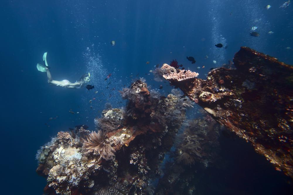 Top 5 des meilleurs spots de plongée de Bali